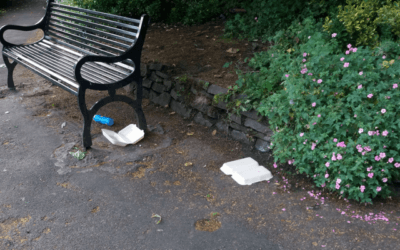 Confessions of a litter picker