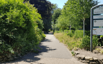 Our park: could it work smarter, not harder?